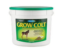 Foal Supplements